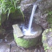 福井県の自然の恵みを…