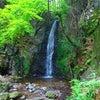 お久しぶりの滝の画像