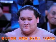 大相撲平成27年5月場所を終わっ...