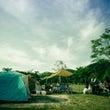 犬キャンプ