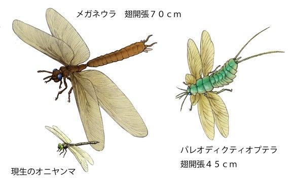 石炭紀の巨大昆虫