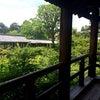京散歩の画像