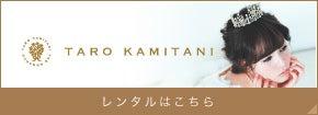taro kamitani