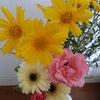 朝どり野菜&お花の画像