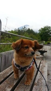 富士山もでてきた