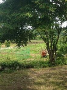家から見た畑