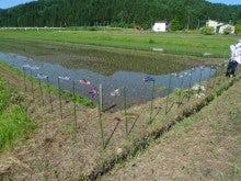 20150607田植えツアー風車②
