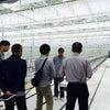 環境復元型☆イノベーション温室ヽ(^o^)丿の画像