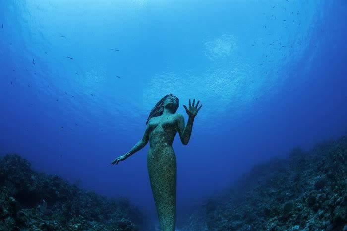 海中のアムピトリーテー像 | (。...