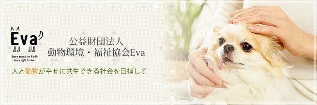 公益財団法人 動物環境・福祉協会 Eva