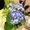 ブルー×ホワイト☆の画像