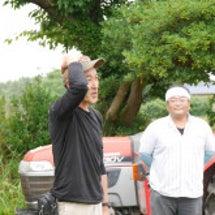 体験農業 ジャガイモ…