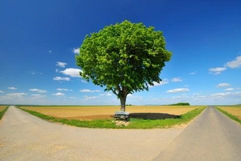 定期的に訪れる、人生の分かれ道。 | 綺麗と笑顔を叶える幸せごはん ...