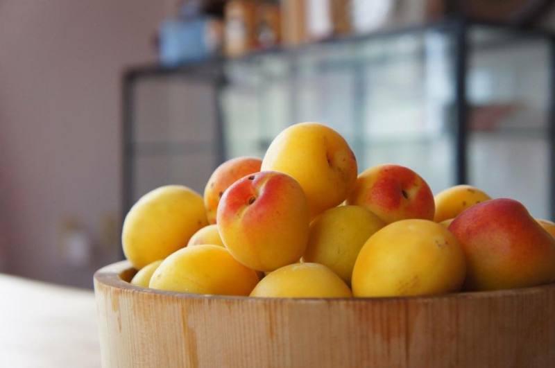 梅干し作り レシピ 完熟梅