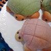 カメのメロンパンの画像