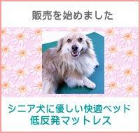 犬用 低反発マットレス詳細へ