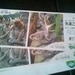 動物園チケット当選