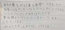 夢新聞、アンケート