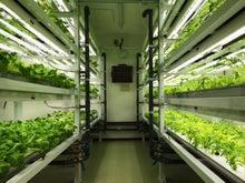 病院に小さな植物工場出現!!~...