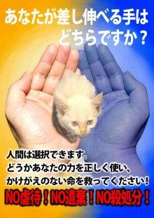 IMG_20150708_201214220.jpg