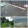 台風一過を期待したのだが…【沖縄3日目】 ガビ━━(・ω・`|||)━━ンの画像