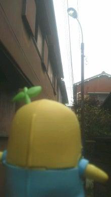 梨の赴くまま