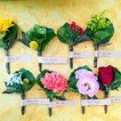 コンセプトは《花とメッセージ》の記事より