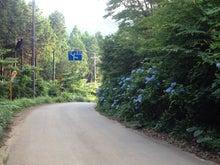 大野峠に向かうのに間違えて左方向へ。