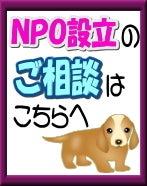 NPO設立はアイビー行政書士事務所へ!