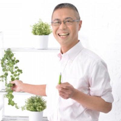 水川あさみさんは「毒舌なオンナ」なのか?の記事に添付されている画像