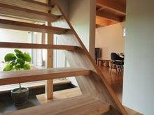 明るい/階段/玄関/インテリアグリーン
