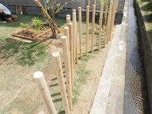 庭/庭の柵/砂場/陽当たり/トネリコ
