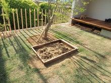 庭/庭の柵/砂場/陽当たり