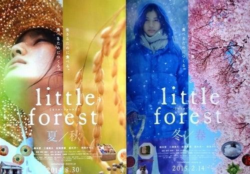 littke forest