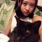 おやすみのためのブログ。小田さくらの記事より