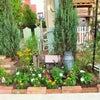 庭-1グランプリを参考に!の画像