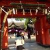 住吉大社「夏越祓神事」へ行ってきましたの画像