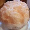 9月1日までお休みです。ねいろ屋 繊細なフルーツの特徴・美味しさをかき氷で味わうことができるお店の画像