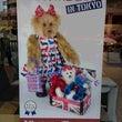 JAPAN TEDD…