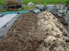 150728たまねぎ苗床土作りと太陽熱消毒処理13