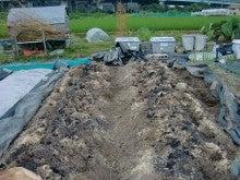 150728たまねぎ苗床土作りと太陽熱消毒処理09