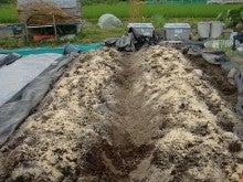 150728たまねぎ苗床土作りと太陽熱消毒処理12