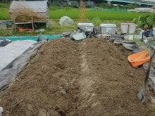 150728たまねぎ苗床土作りと太陽熱消毒処理15
