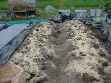 150728たまねぎ苗床土作りと太陽熱消毒処理07