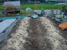 150728たまねぎ苗床土作りと太陽熱消毒処理16