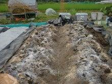 150728たまねぎ苗床土作りと太陽熱消毒処理10