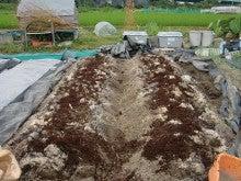 150728たまねぎ苗床土作りと太陽熱消毒処理11