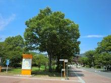 岐阜大学キャンパス