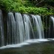 戸隠や軽井沢、滝や樹…
