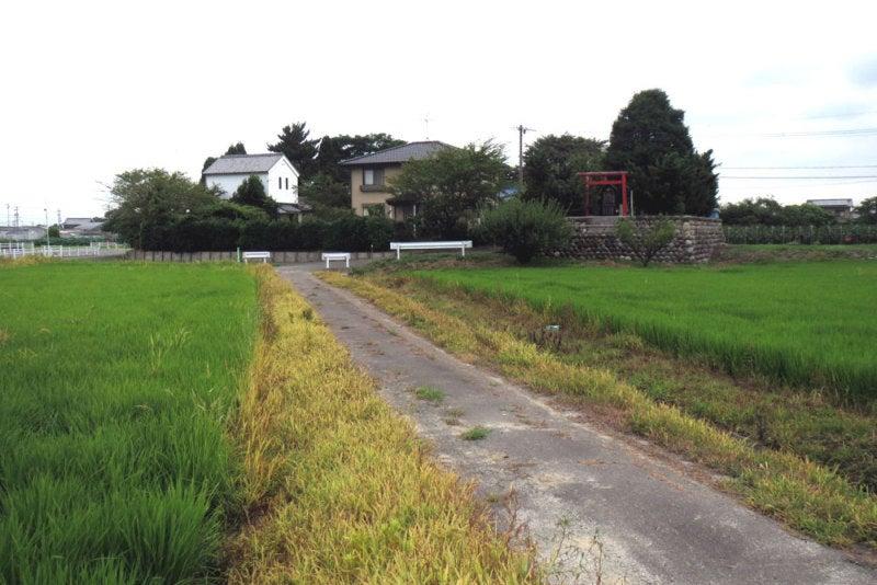 赤目城/①遠景